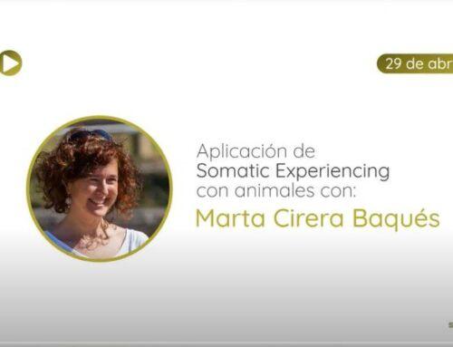 Aplicación de Somatic Experiencing con animales con Marta Cirera Baqués